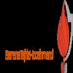 شرکت بارانا تجهیز هوشمند